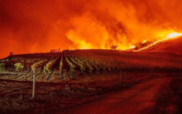 Incendies Californie