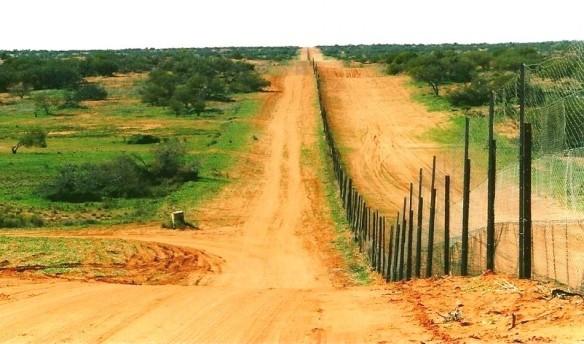 Barrière à dingos