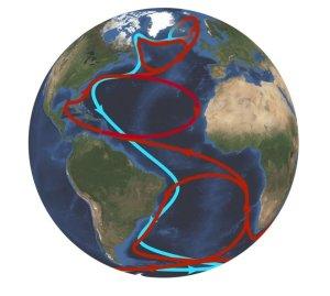 Gulf Stream