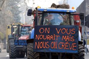Suicides des agriculteurs